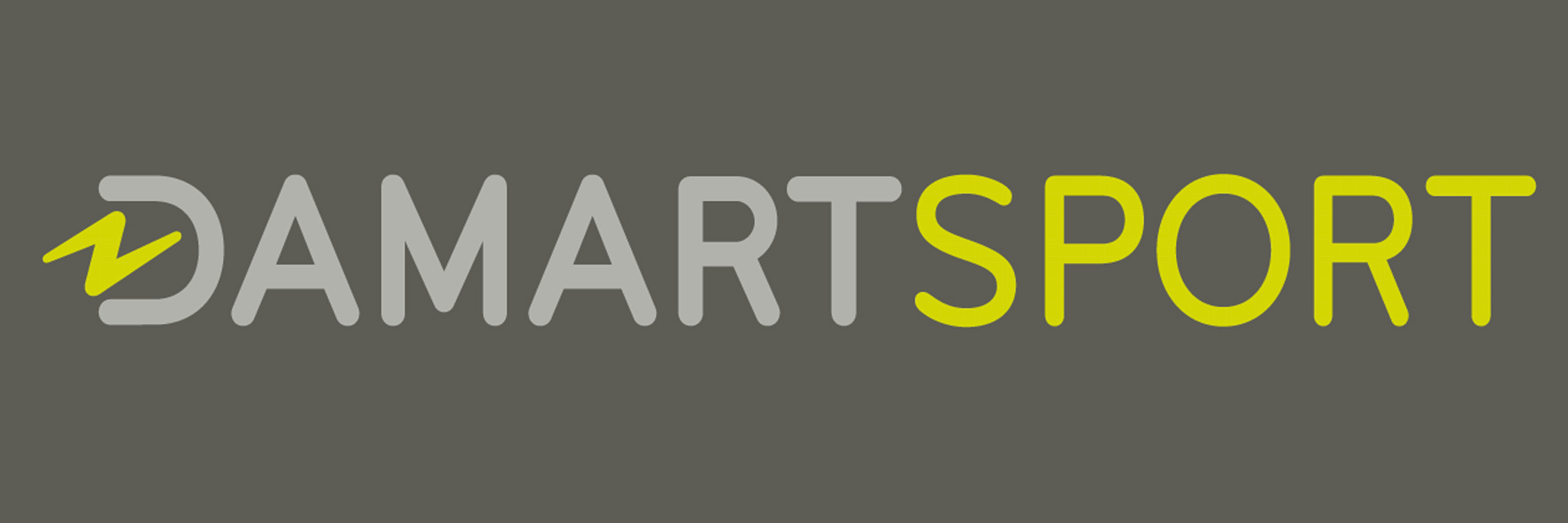 new_logo_ds_fond_gris